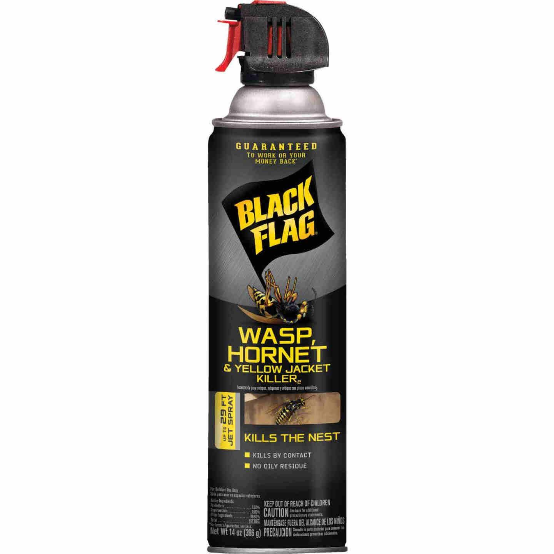 Black Flag 14 Oz. Liquid Aerosol Spray Yellow Jacket, Wasp & Hornet Killer Image 1