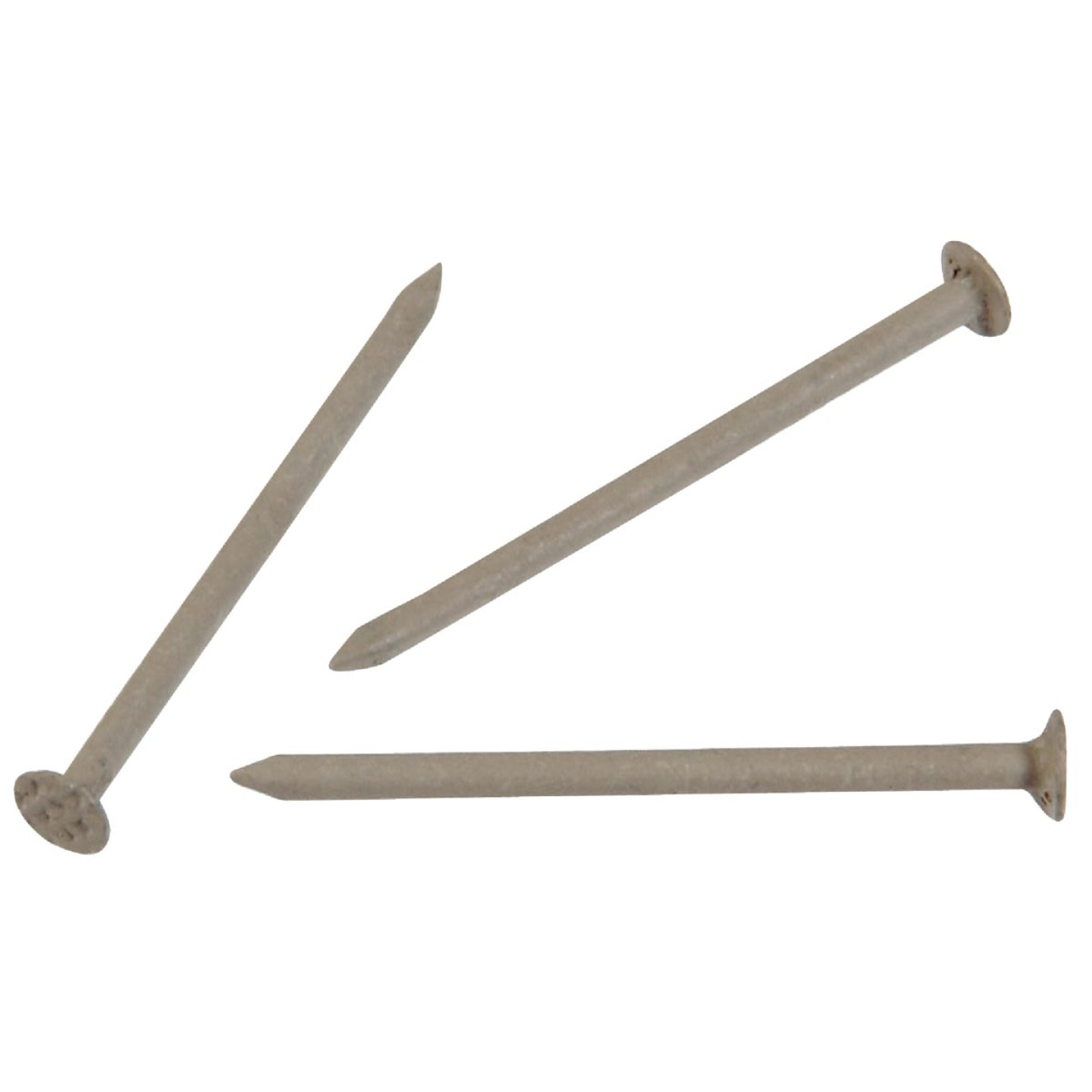Hillman Anchor Wire 1-1/4 In. 15 ga Clay Stainless Steel Trim Nails (5 Ct., 6 Oz.)  Image 1
